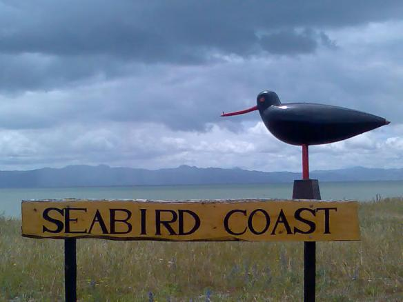 Seabird Coast, near Miranda.